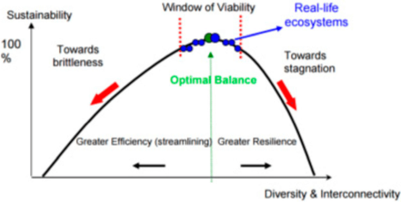 Sustainability-as-a-trade-off-between-efficiency-and-resilience-CATs-critique-of